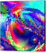 B497005 Acrylic Print