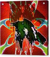B497055 Acrylic Print