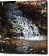 Babbling Brook 2013 Acrylic Print