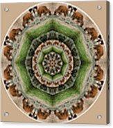 Baby Bison Mandala Acrylic Print
