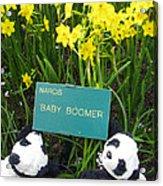 Baby Boomers Acrylic Print