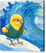 Baby Chick Surfing Acrylic Print