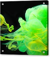 Baby Dragon - Abstract Photography Wall Art Acrylic Print