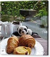 Baby Panda And Croissant Rolls Acrylic Print