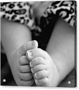 Baby Toes Acrylic Print by Lisa Phillips