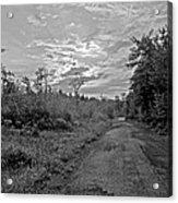 Back Road At Sunset Pocono Mountains Pennsylvania Acrylic Print