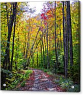 Back Road In The Adirondacks Acrylic Print