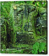 Back To The Earth Acrylic Print