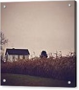 Back To The Old House Rustic Farmhouse Photo Acrylic Print