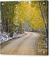 Backroads Of Autumn Acrylic Print