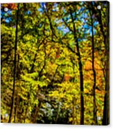 Backroads Of The Great Smoky Mountains National Park Acrylic Print