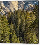 Backroads Of Yosemite Acrylic Print