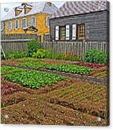 Backyard Garden In Louisbourg Living History Museum-1744-ns Acrylic Print