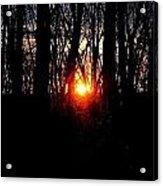 Backyard Sunset 2 Acrylic Print