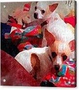 Bad Dogs Acrylic Print by Denisse Del Mar Guevara