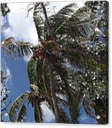 Bahamas Sky Acrylic Print