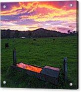 Bahrs Scrub Sunset Acrylic Print