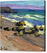 Baja Beach Acrylic Print