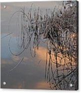 Balance Of Elements Acrylic Print by Simona Ghidini