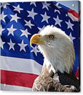 Bald Eagle And American Flag Acrylic Print