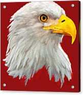 Bald Eagle Painting Acrylic Print