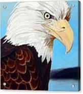 Bald Eagle Acrylic Print
