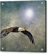 Bald Eagle Textured Art Acrylic Print