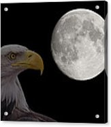 Bald Eagle With Full Moon - 2 Acrylic Print