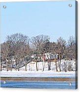 Bald Eagles In Tree In Grand Rapids Ohio Panorama Acrylic Print