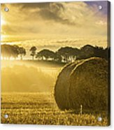 Bales In The Morning Mist Acrylic Print