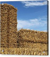 Bales Of Straw Against Blue Sky Acrylic Print