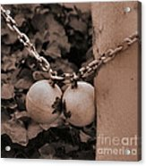 Ball And Chain Closure  Acrylic Print