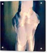 Ballet Slippers 1 Acrylic Print