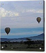 Balloons Above Serengeti. Acrylic Print