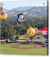 Balloons Over Wine Country Acrylic Print