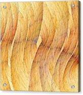 Balsa Woods Acrylic Print