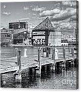 Baltimore Inner Harbor Skyline Vi Acrylic Print