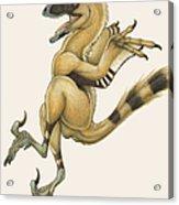 Bambiraptor, A Bird-like Dromaeosaurid Acrylic Print