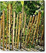 Bamboo Fencing Acrylic Print by Lilliana Mendez