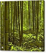 Bamboo Forest Twilight  Acrylic Print