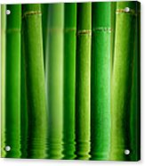 Bamboo Forest With Water Reflection Acrylic Print