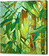 Bamboo Series Acrylic Print