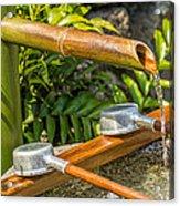 Bamboo Spout Acrylic Print