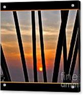 Bamboo Sunset - Black Frame Acrylic Print