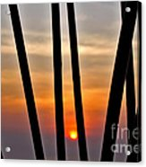 Bamboo Sunset Acrylic Print