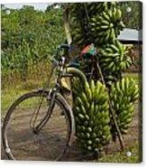 Banana Bike Acrylic Print