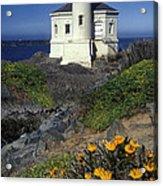 Bandon Lighthouse Acrylic Print