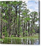 Banks Lake Georgia Acrylic Print