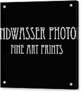 Banner Acrylic Print
