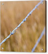 Barb Wire Country Fence Acrylic Print
